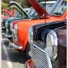 Selection of classic minis at VMCI Mini Show 2013